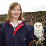 Book Your Owl Experience